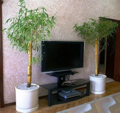 ideas   bamboo   interior part  interior