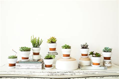 How To Decorate Computer Room Painted Pots Succulents