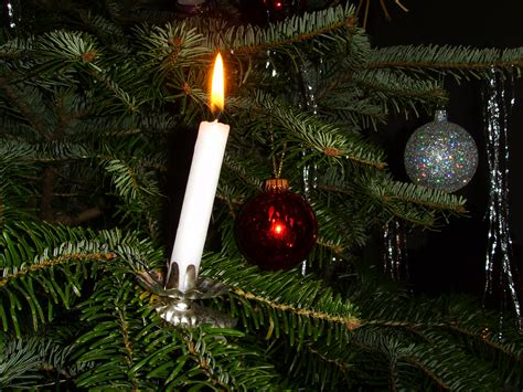 file candle on christmas tree jpg wikimedia commons