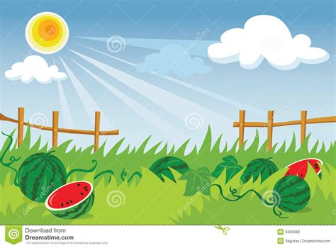 Watermelon plantation stock vector. Illustration of cloud ... W Is For Watermelon