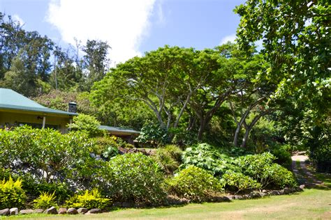 bed and breakfast oahu bed and breakfast hawaii 28 images hawaii bed breakfast in maui best bed and
