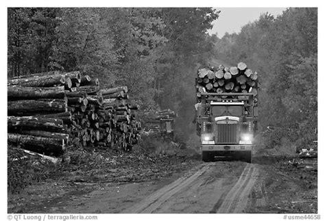 black  white picturephoto log truck drives  pile  tree trunks maine usa