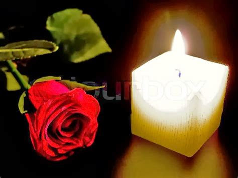 candele rosa candles and roses hd wallpapers