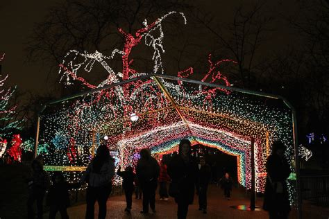 zoo lights lincoln park 16 things to do in chicago this winter chicago food planet