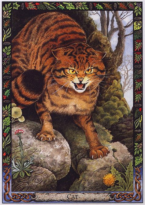 libro the druid animal oracle lrs the druid animal oracle painted by bill worthington cat image only