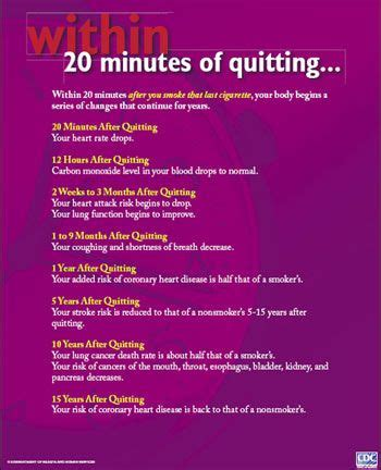 best 25+ after quitting smoking ideas on pinterest | i