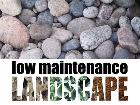 low maintenance low maintenance landscapes landscaping services in