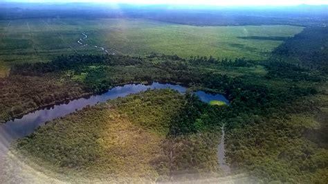 Kartu Telepon Indonesia Wwf World Wildlife Fund wwf initiates green economy in kalimantan conservation area national the jakarta post
