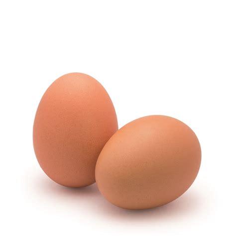 imagenes de huevos mamonas huevos huevos gallina 63 73g