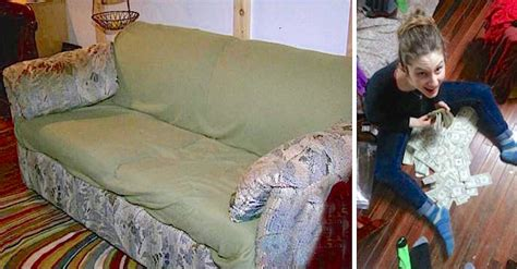 smelly couch college students buy smelly old couch for 20 and