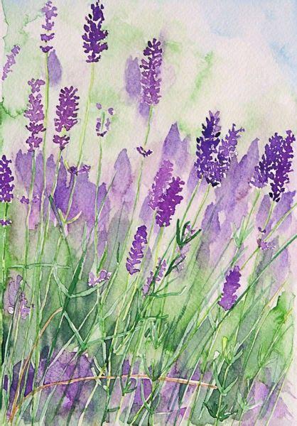 lavendar paint parfum de la provence photographic print flower