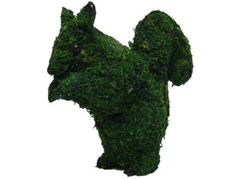 squirrel topiary squirrel animal topiary frame