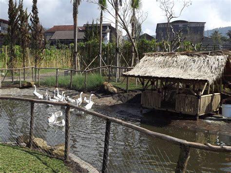 alya corner floating market lembang