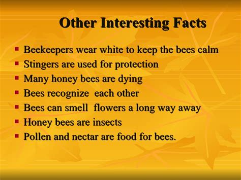five bizzy honey bees the and factual of the honey bee captivating educational and fact filled picture book about bees for toddlers children and adults books all about honey bees