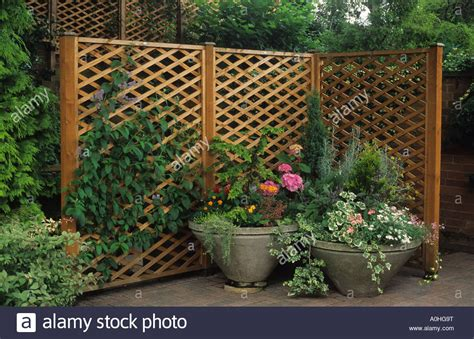 Portable Trellis garden wolverhton portable trellis fencing hiding stock photo royalty free image