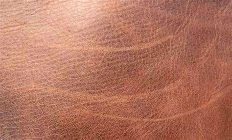 Scratches On Leather by How To Get Scratches Out Of Leather