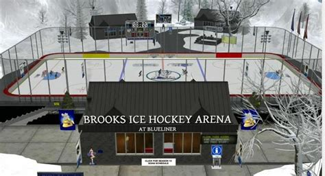backyard hockey online free outdoor furniture design and