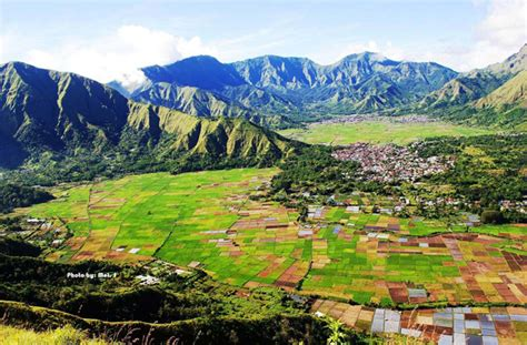 ladang sawah terindah  indonesia  bikin hatimu