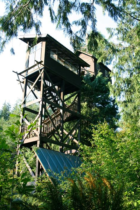 cedar creek treehouse washington cedar creek treehouse