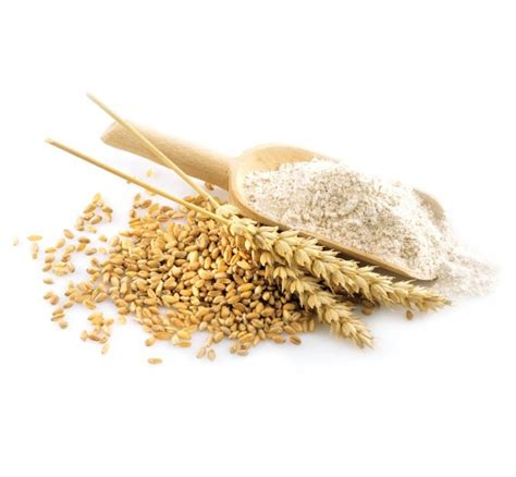 whole grains uses 8 common grains and how to use them chatelaine