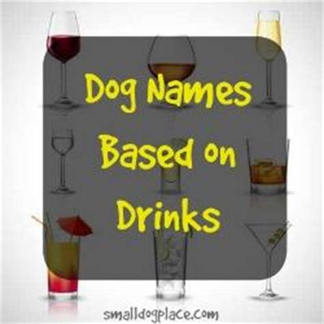great puppy names tough names great name ideas for big and small dogs