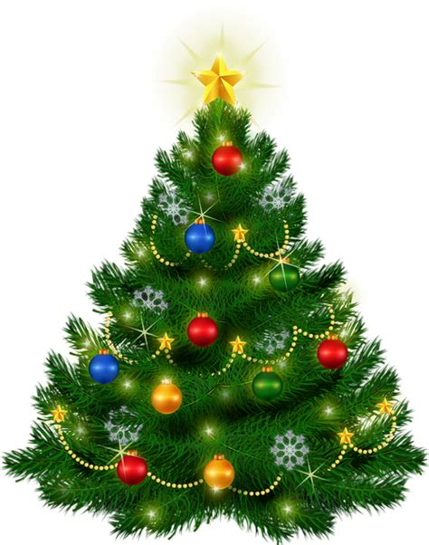 logged netted christmas trees in manchester sapin de no 235 l tree png 225 rbol de navidad