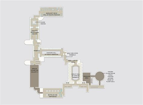 Blueprint Floor Plans For Homes dino tour