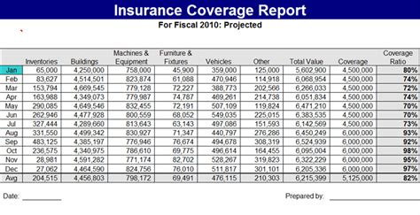 Insurance Report Template