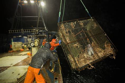 deadliest catch getting old deadliest catch and bering sea gold return for all new