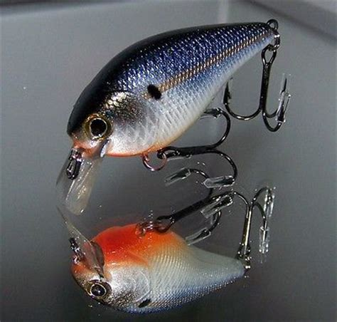 Wobbler Lackieren by 1000 Images About Custom Painted Lures On Pinterest