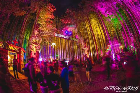 electric house music the electric forest lineup for 2017 is here your edm