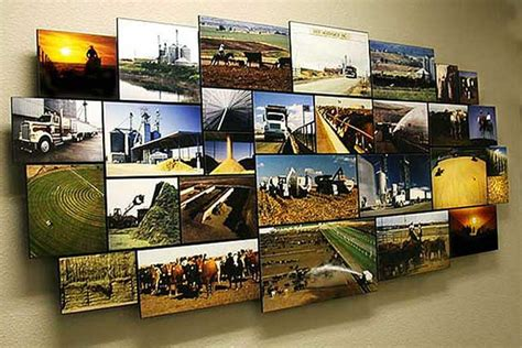 photo montage wall wilson cattle company beef northwest feeders photo