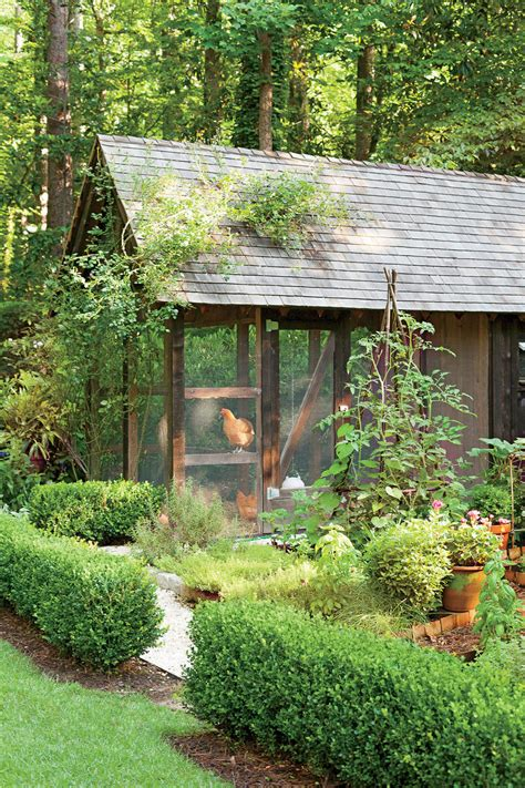 southern backyard dream garden it even has a chicken coop southern living