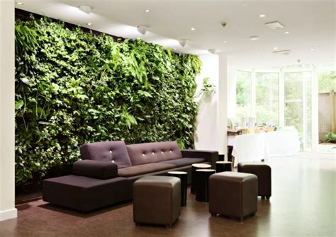 10 rooms with indoor plants