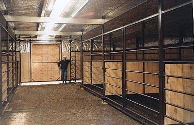 calving barn ciftlik cattle barn miniature  breeds ve horse barns