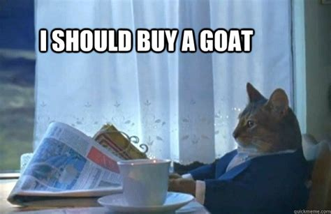 Cat Meme I Should Buy A Boat - i should buy a goat sophisticated cat quickmeme