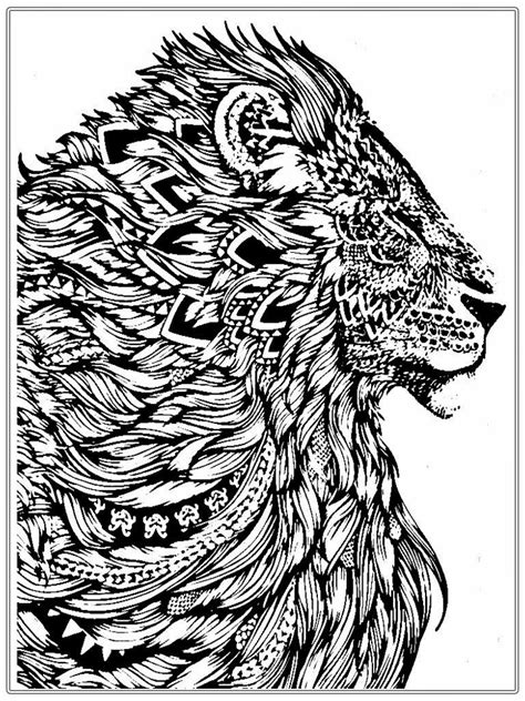 lion coloring page for adults lion coloring pages for adults realistic lion adult