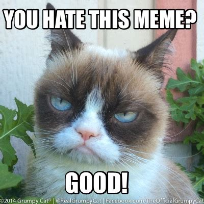 Good Meme Sites - meme creator you hate this meme good meme generator at