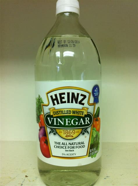 does vinegar kill germs united truth seekers