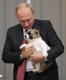 putin puppy russian leader putin gets another puppy as gift daily mail