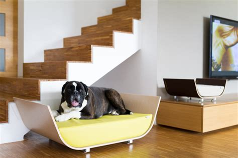 dog friendly couches modern and contemporary pet products updated daily