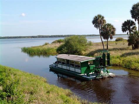 myakka river boat tour myakka river state park wholylocal