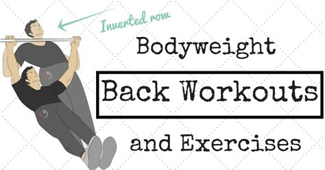 weightless back workouts programs