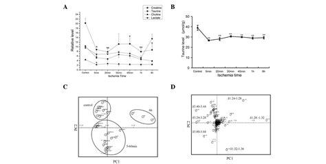 taurine vs creatine taurine detected using high resolution magic angle