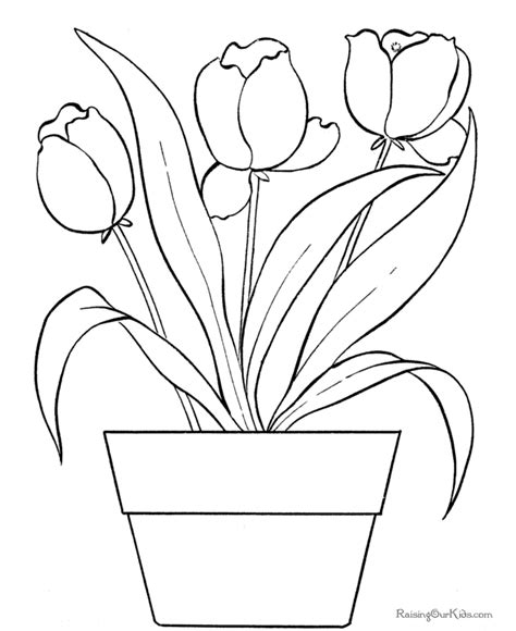 coloring pictures of tulip flowers flower coloring pages of tulip 005