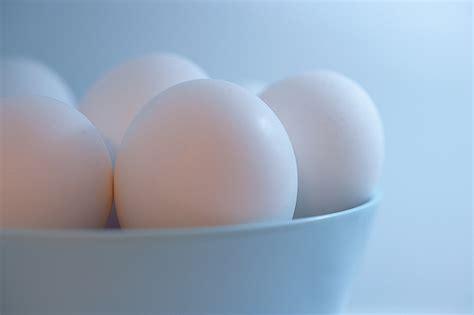 experimento infografia del huevo en agua salada experimento del huevo en agua salada 191 flotar 225 o se hundir 225
