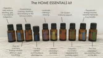 Home Essentials by Ways To Use The Doterra Home Essentials Kit Lunch Lady Lou