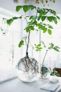 diy home inspo glass vases a pair a spare