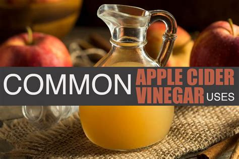 Apple Cider Vinegar Shelf by Apple Cider Vinegar And The Common Uses Lassens