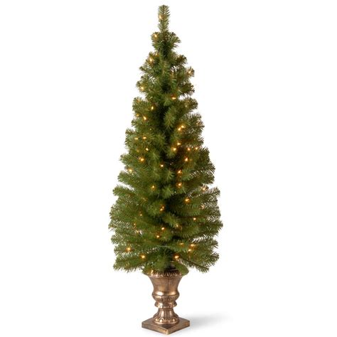 national tree company 5 ft montclair spruce entrance